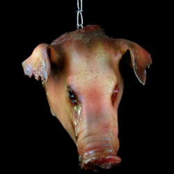 PIG HEAD-HANGING WITH CHAIN-ROTTEN FINISH