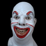PINTO CLOWN HEAD