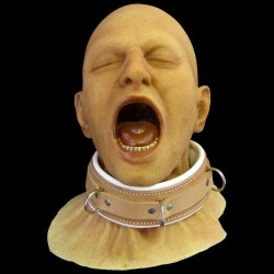 BUCKLE RESTRAINT COLLAR
