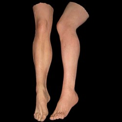 MALE LEGS-PAIR-FRESH FINISH