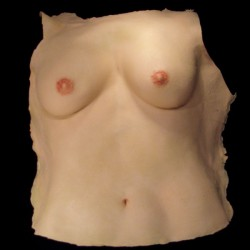 SKIN CHEST-FEMALE