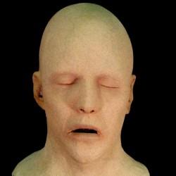 SLEEPER HEAD-FRESH FINISH