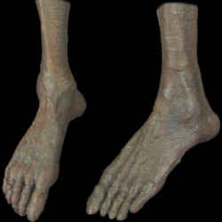 FEET - MALE - PAIR - ZOMBIE