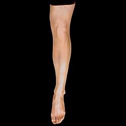 FEMALE LEG-LEFT-FRESH FINISH