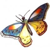 Бабочка (пластик)