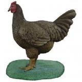 Курица на подставке
