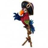Попугай пират