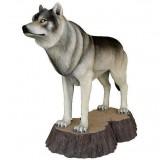 Волк на пне