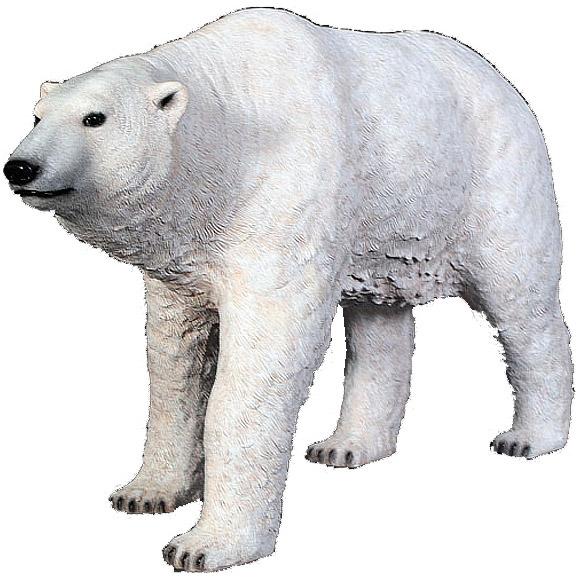 Белый медведь стоящий