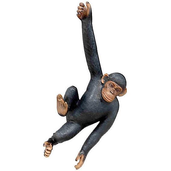 Висящая шимпанзе