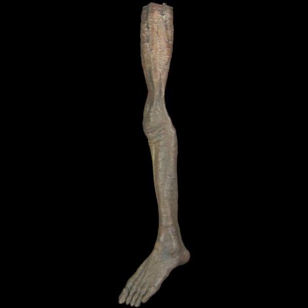 MALE LEG-LEFT-ZOMBIE FINISH