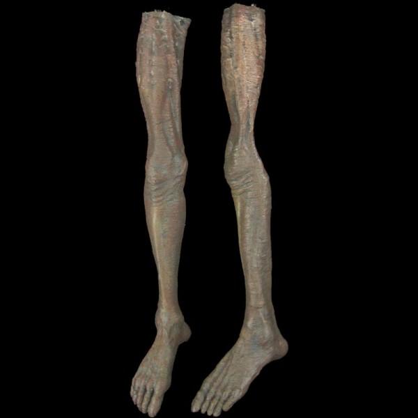 MALE LEGS-PAIR-ZOMBIE